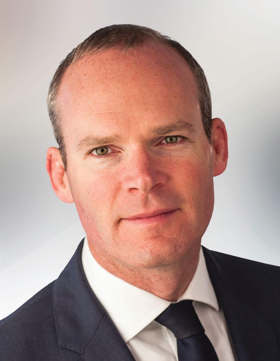 Simon Coveney, TD